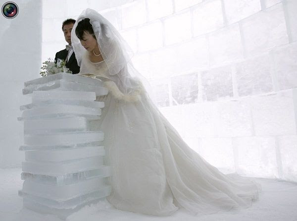 צילומי החתונות היצירתיים ביותר