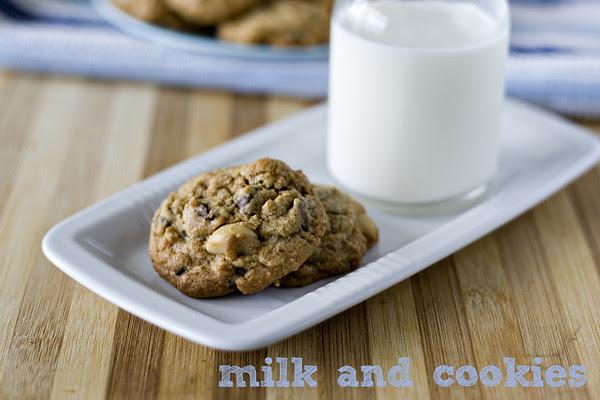 choc chip macadamia cookie 07
