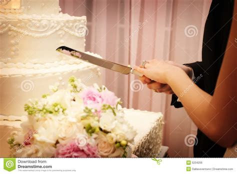 Bride And Groom Cutting The Wedding Cake Stock Photo