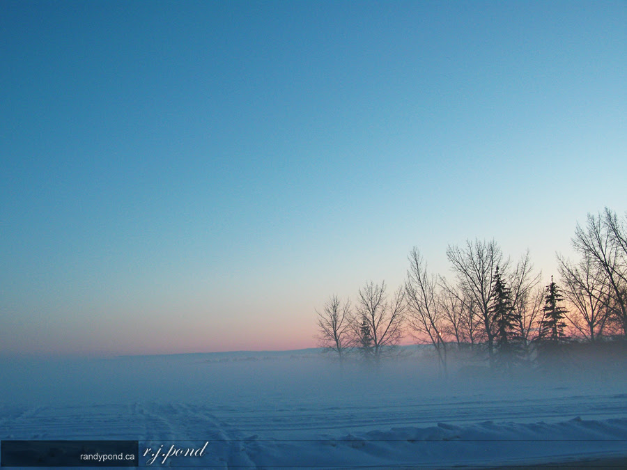 ~ 41/365 Winter Sunset ~