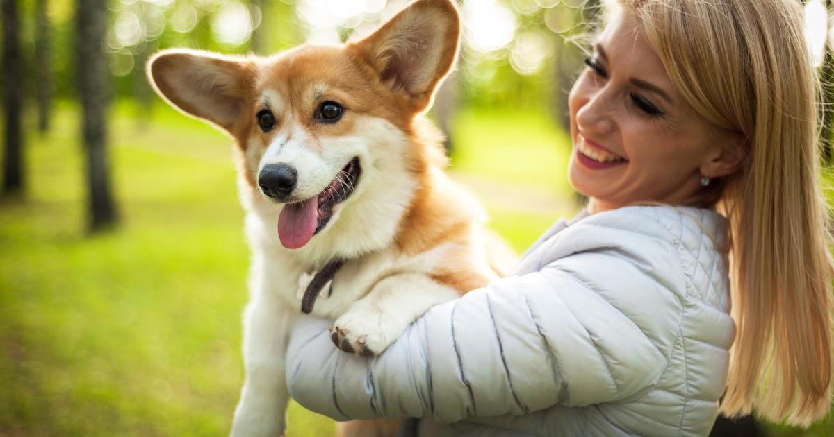 Beliebteste Hundenamen Weiblich