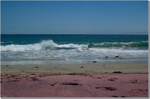 Praia Pfeiffer__A ação das ondas3