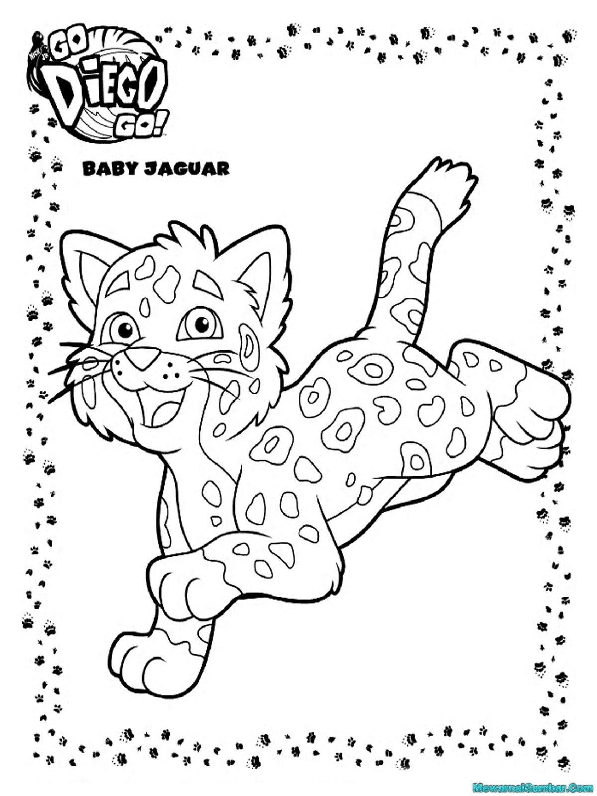 Mewarnai 11 Gambar Jaguar