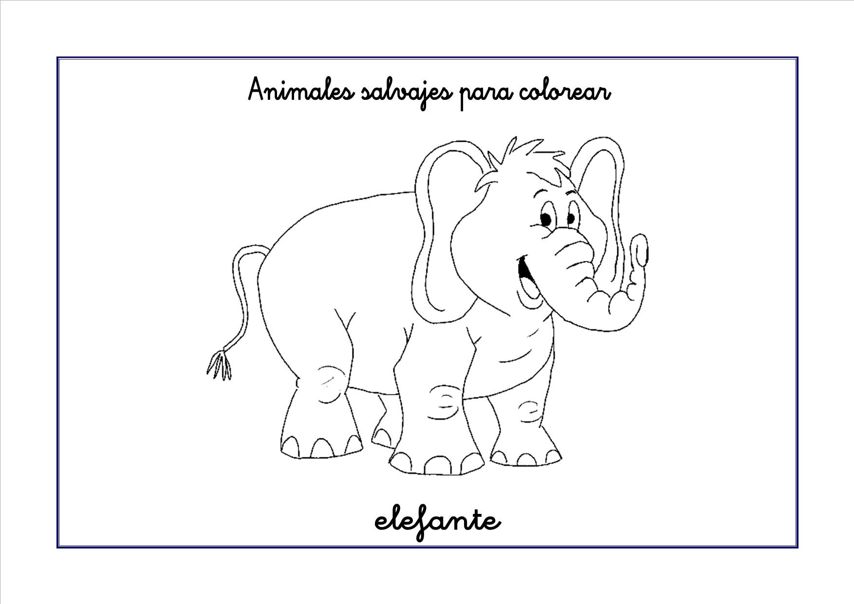 elefante colorear 300x212
