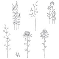 Flowering Fields Wood-Mount Stamp Set