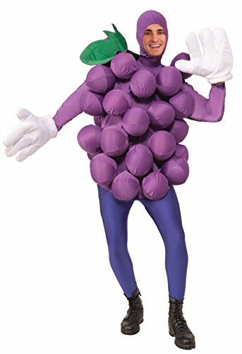 Purple Grapes Costume for Adults