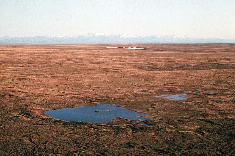 File:Tundra looking south toward Brooks Range, Alaska.jpg