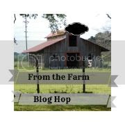 http://thehomesteadinghippy.com/soil-recipefrom-farm/