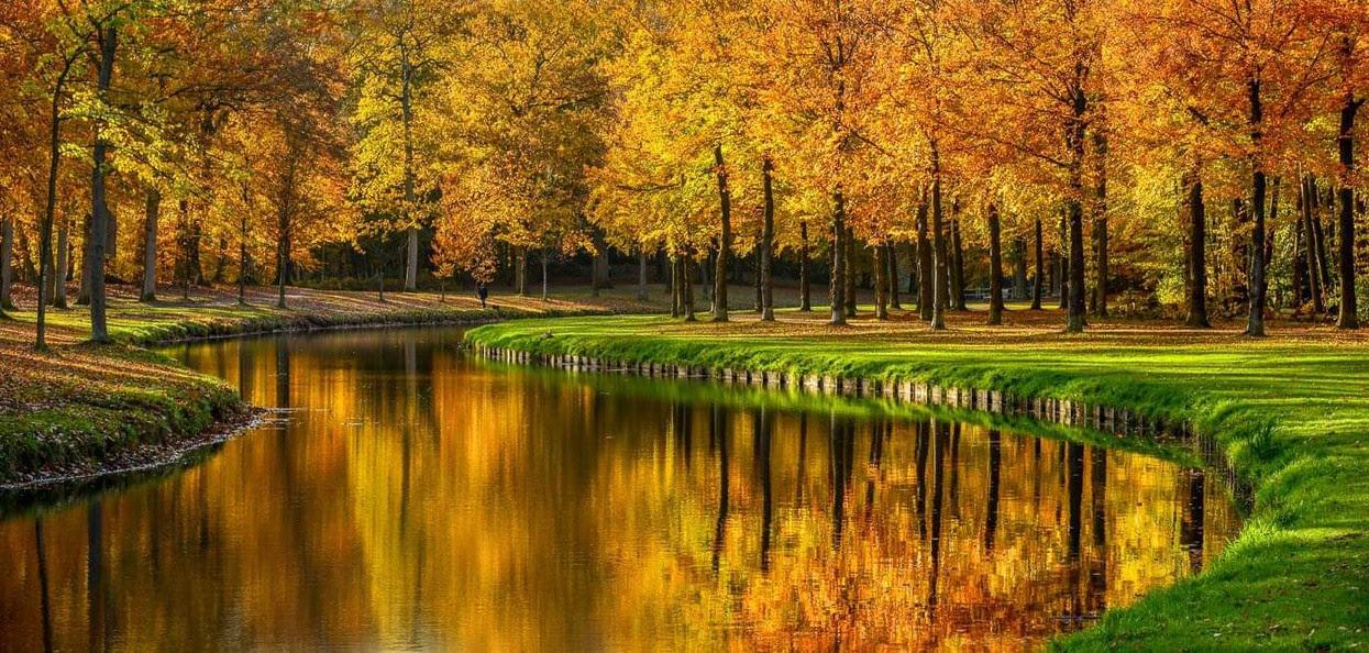 Foto Its A Beautiful Day Van Leeneus