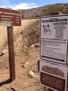 Mountain Lion AND Rattlesnake warning