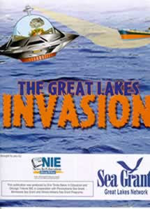 retro spaceship invader graphic from SeaGrant IL-IN