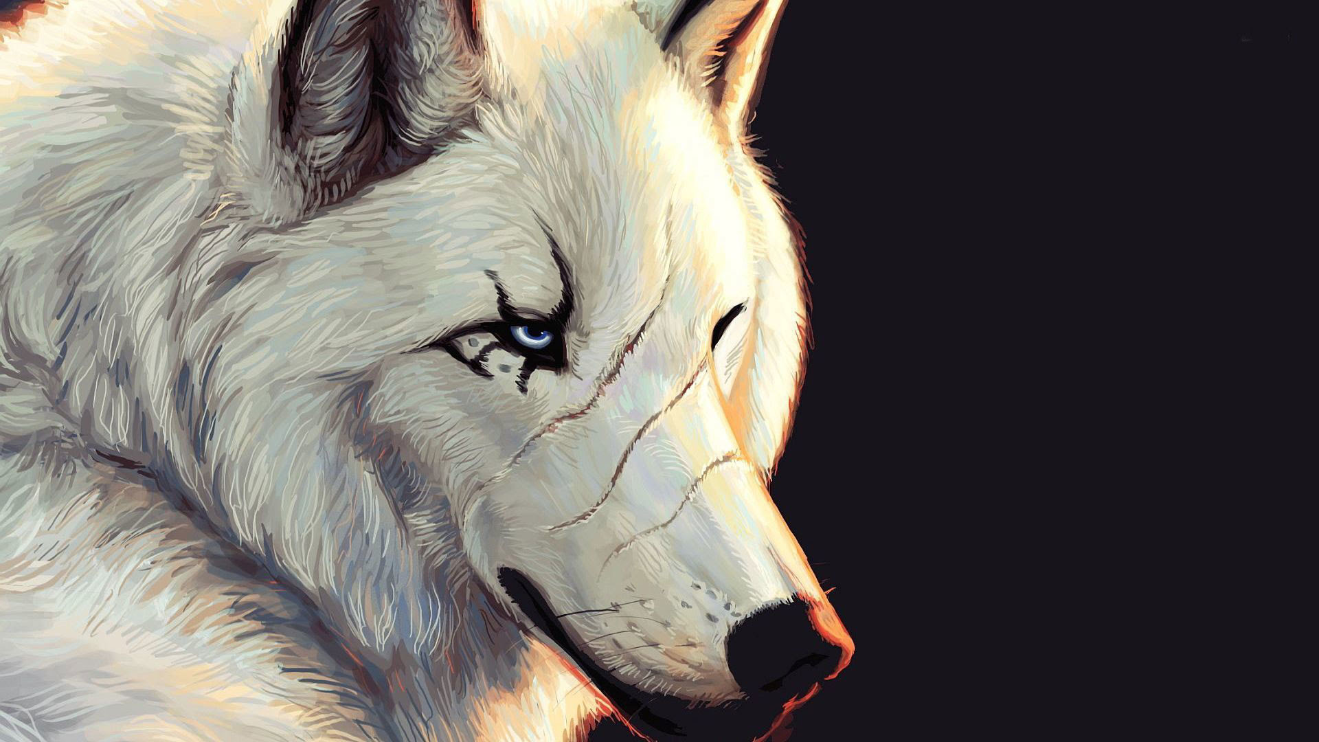 Awesome Iphone Lone Wolf Hd Wallpaper Images