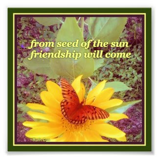 Sunflower Butterfly Friendship Seeds Photo Print