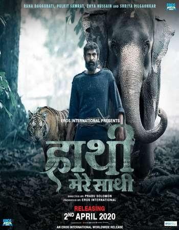 Download & Watch Haathi Mere Saathi (2021) Hindi 720p WEB-DL [1.3GB] Download 480p, 720p, 1080p, 4k Ultra,