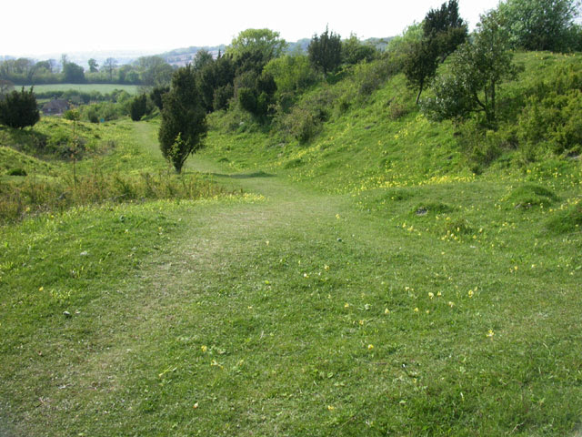 File:Noar Hill Wildlife Reserve - geograph.org.uk - 31331.jpg