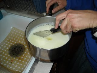 Goat Milk Cheese Cutting Curds in Pot