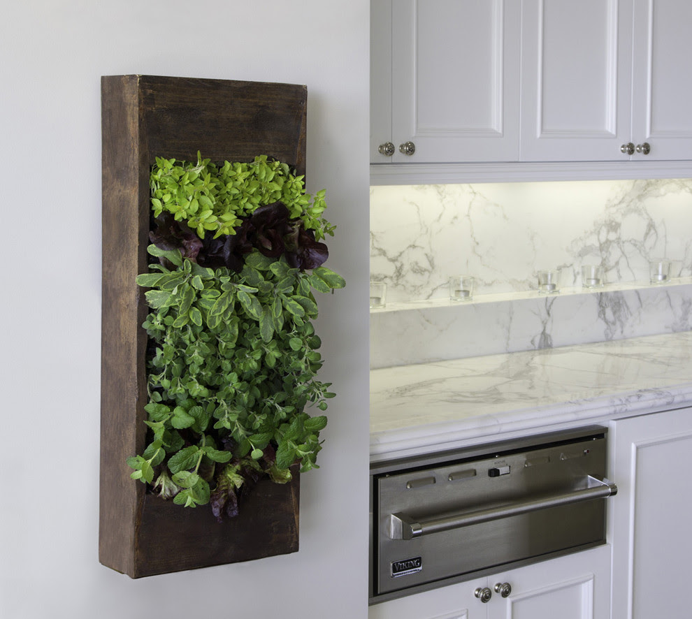 vertical herb box