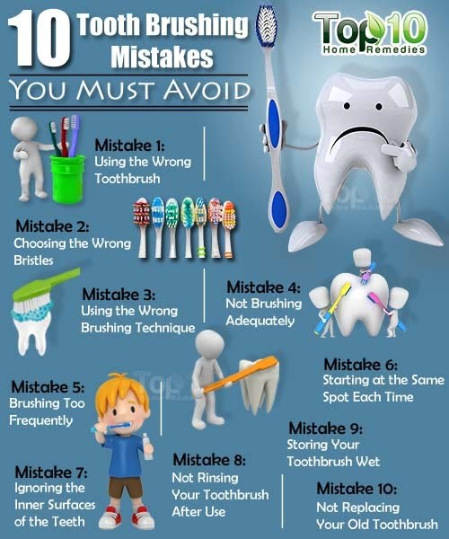 EHSQ (Environment,Health,Safety And Quality) : 10 Tooth