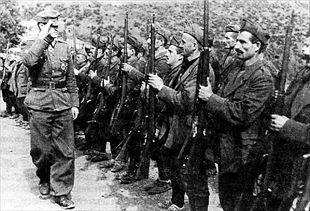 Τμήμα Τσάμηδων, συνεργατών των Γερμανών, επιθεωρείται από Γερμανό αξιωματικό.