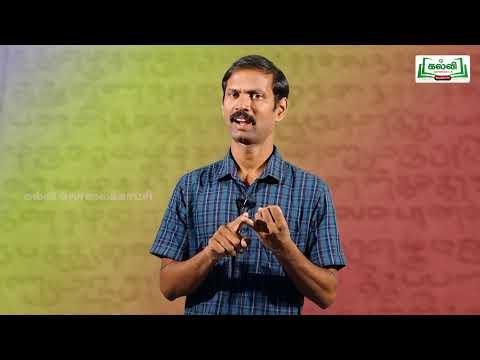 10th Tamil அகப்பொருள் இலக்கணம் இயல் 6  Kalvi TV