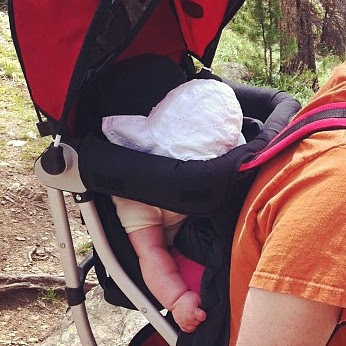 The Happy Hiker {/Snoozer} {Day 2} #one passenger #augustphotoaday #catchup