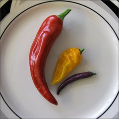 Still Life with Chiles #2