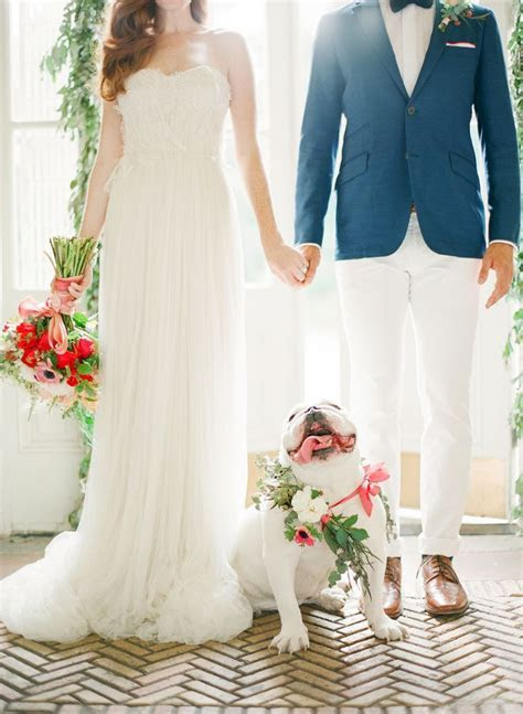 17 best images about Pet Friendly Weddings on Pinterest