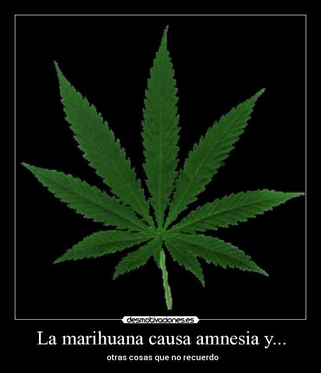 Imagenes Y Carteles De Marihuana Pag 87 Desmotivaciones