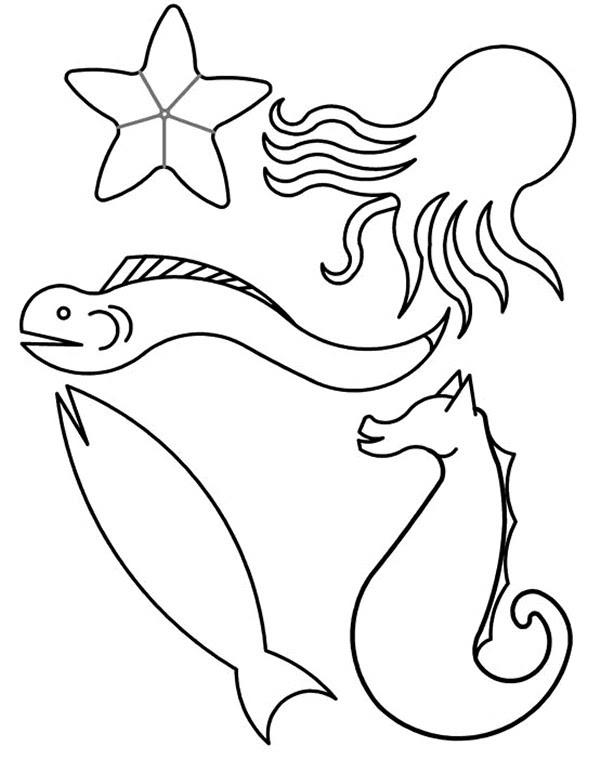mewarna10 kleurplaten voor volwassenen roofvissen