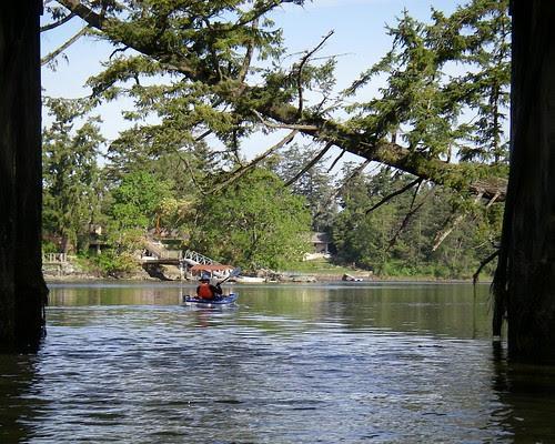 2008-05-04 Portage Inlet 008