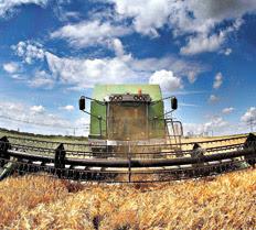 http://www.pagina12.com.ar/fotos/20090731/notas/na03fo01.jpg