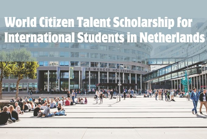 World Citizen Talent Scholarships For International Students