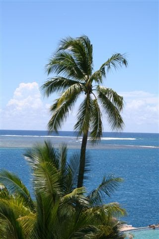 Stories Of A Traveling Diva Tahitian Cruise Topless In