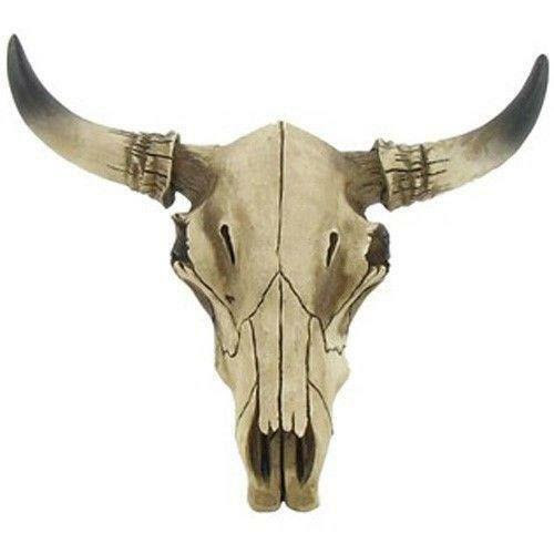 Download Decorative Cow Skulls | eBay
