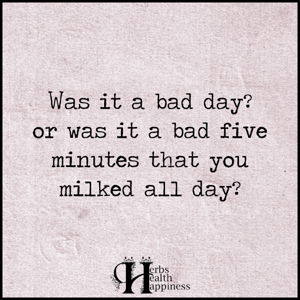 Was It A Bad Day Or Was It A Bad Five Minutes ø Eminently Quotable