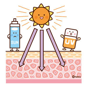 クリップアート紫外線対策日焼け止めのイラスト2皮膚のイメージ