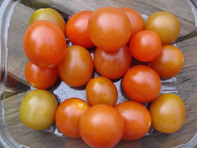 end of year veggies (1)