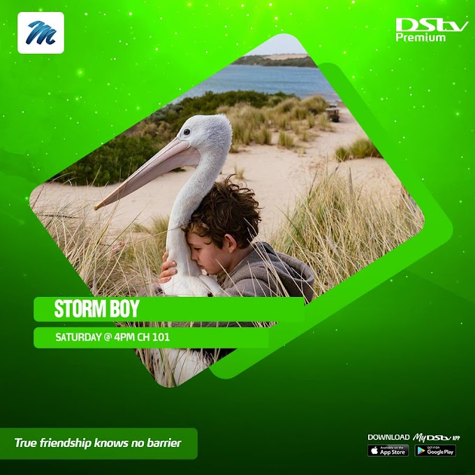 DStv Brings You All The Entertainment And Education Shows That Kids Love!