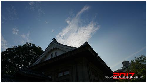 演武場11.jpg