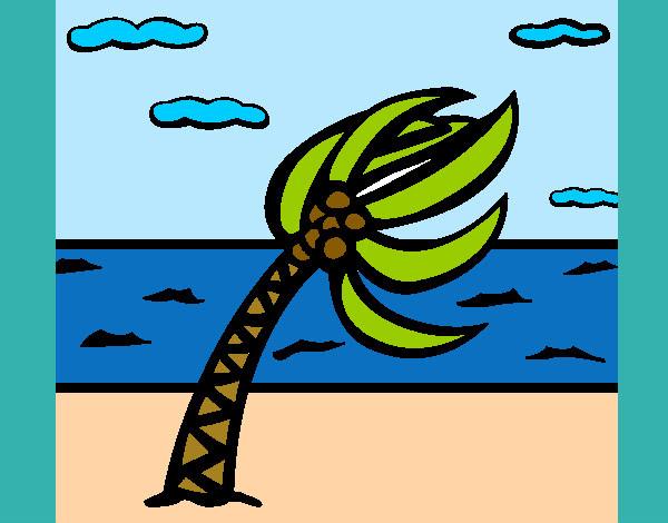 Dibujo De Huracan Pintado Por Cookie1d En Dibujosnet El Día 06