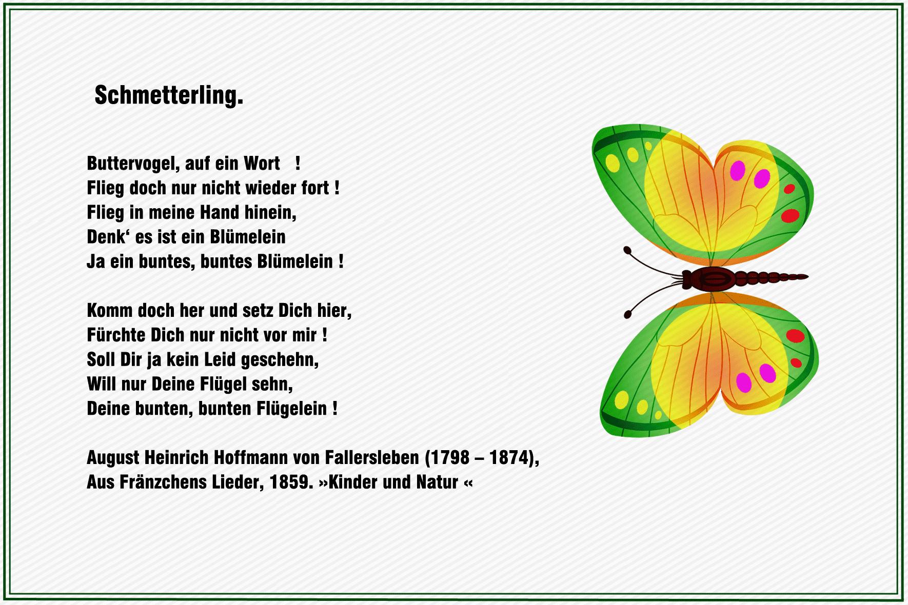 Geburtstag Gedicht Schmetterling