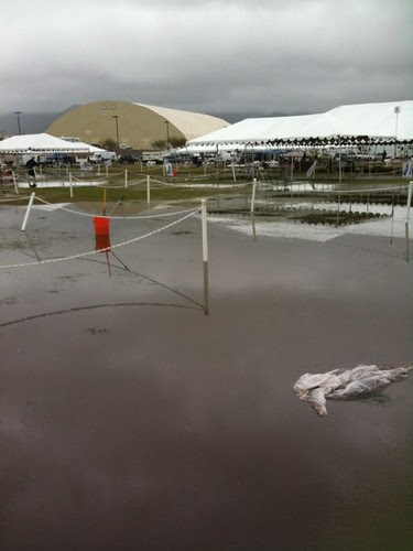 Fiesta Cluster showgrounds rained out