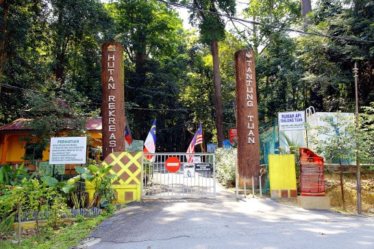 Entrance to Tanjung Tuan forest reserved