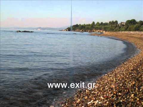 Ξενοδοχεια στο πεταλιδι Hotels in Petalidi Alexandros Apartments Exit.gr