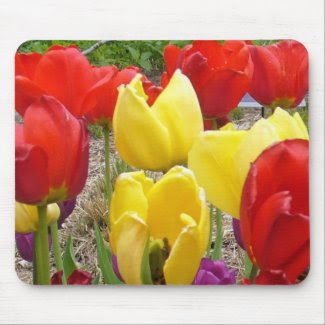 Tulips of the Botanical Garden mousepad