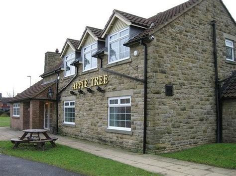 Wonderful Sunday Dinner here!!   Review of The Apple Tree