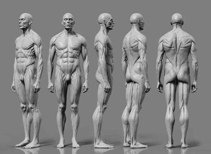 Free Character-people 3D Models | Get free 3d Character