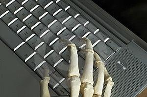Skeletal Hands Free Stock Photo