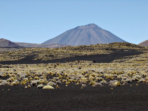 Malargüe - La Payunia - Volcán Payún Liso