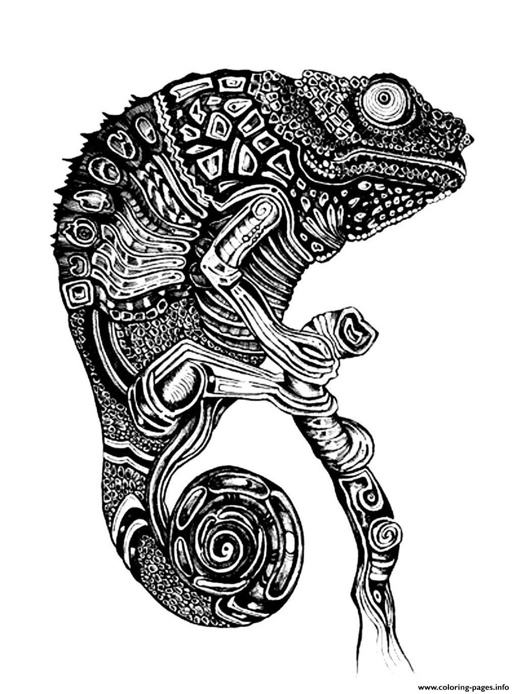 Adult Difficult Cameleon Coloring Pages Printable